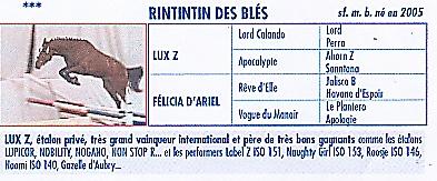RINTINTIN DES BLES DANS LES 100 MEILLEURS 4 ANS