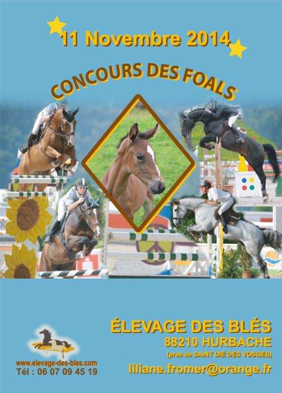 CONCOURS DES FOALS MARDI 11 NOVEMBRE 2014