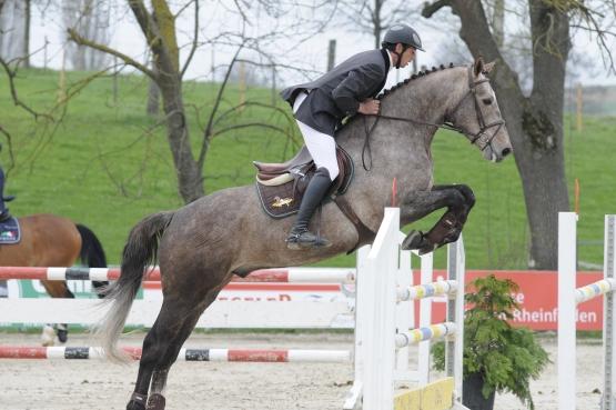 Cheminot  Concours des jeunes chevaux du 22. et 23 mai 2012