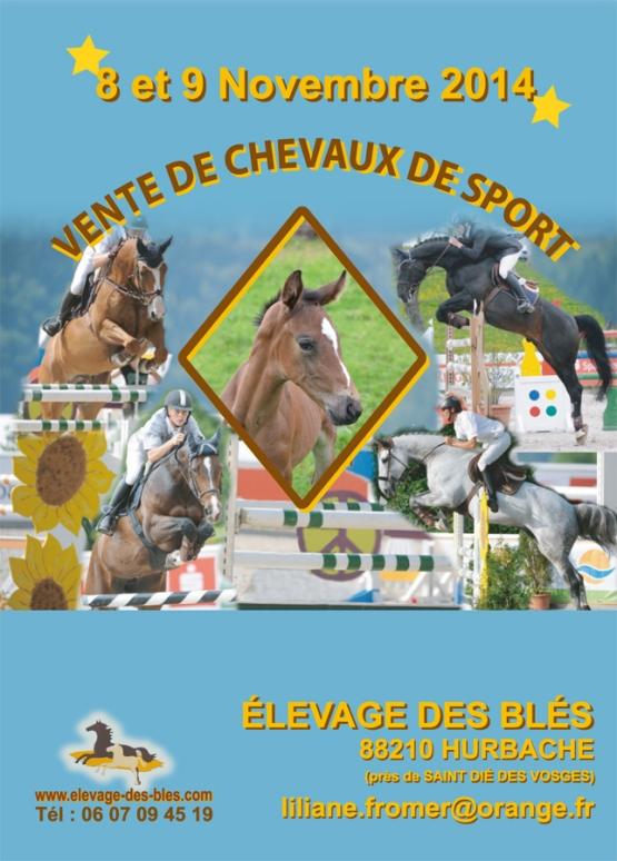 VENTE AUX ENCHERES DE CHEVAUX DE SPORT les 08 & 09 NOVEMBRE 2014