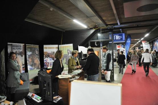 CSI DE BALE LE 12. - 15. 01 2012